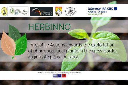 b_450_300_16777215_00_images_diafores_herbino.jpg
